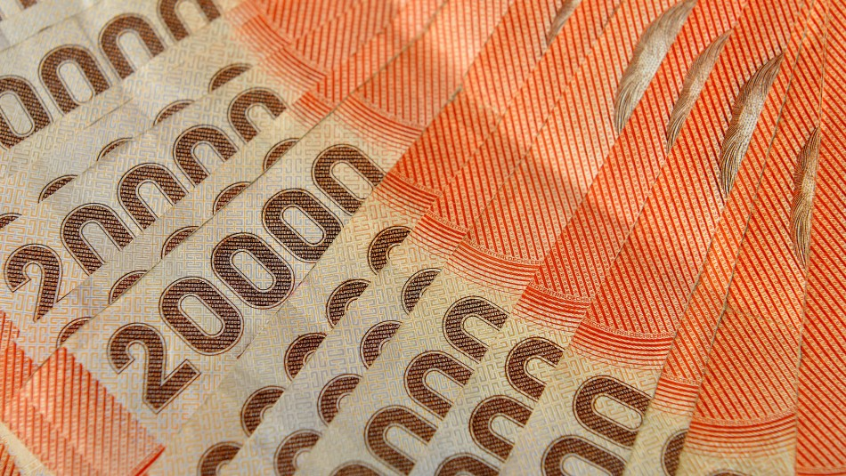 Hay varios millones disponibles: Revisa con tu rut si tienes bonos sin cobrar