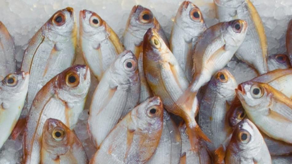 Estudio: El consumo de pescado previene la diabetes