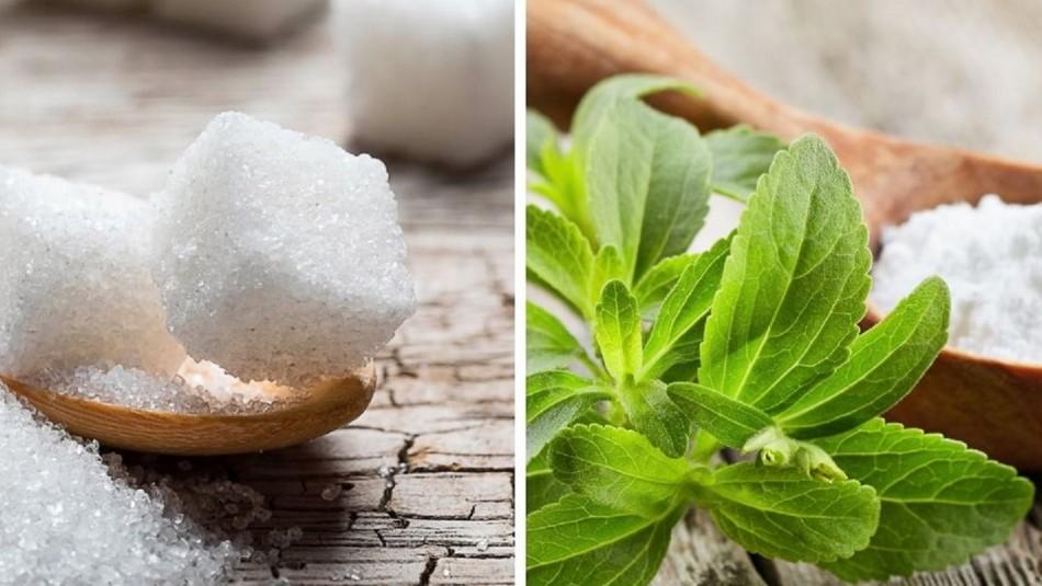 Azúcar vs. Endulzante: Revisa cuáles son sus ventajas y desventajas
