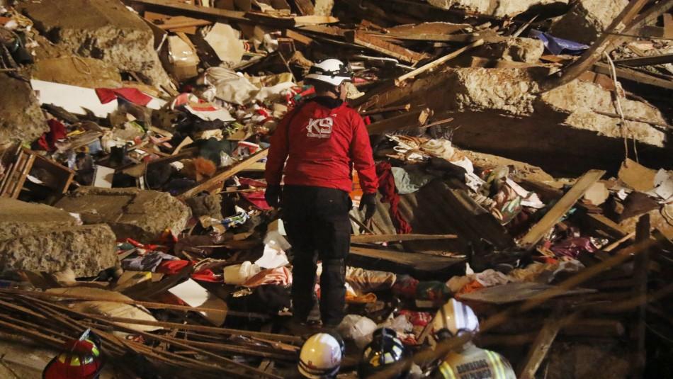 Derrumbe en Valparaíso: Perros especializados buscan posibles desaparecidos