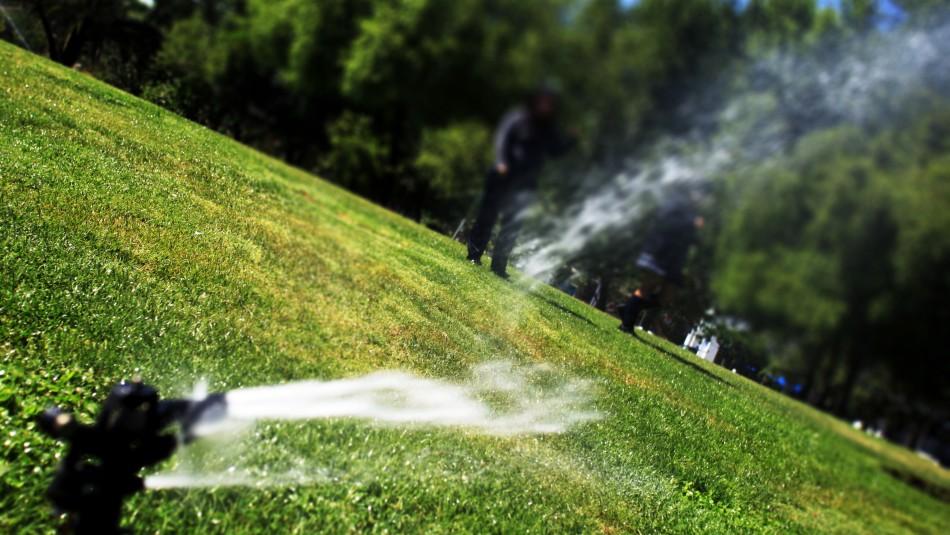 ¿Parques sin pasto? Escasez de agua hace recomendable su reemplazo en la zona central