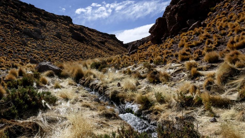Caso Silala: Chile entrega escrito adicional a La Haya por contrademanda boliviana