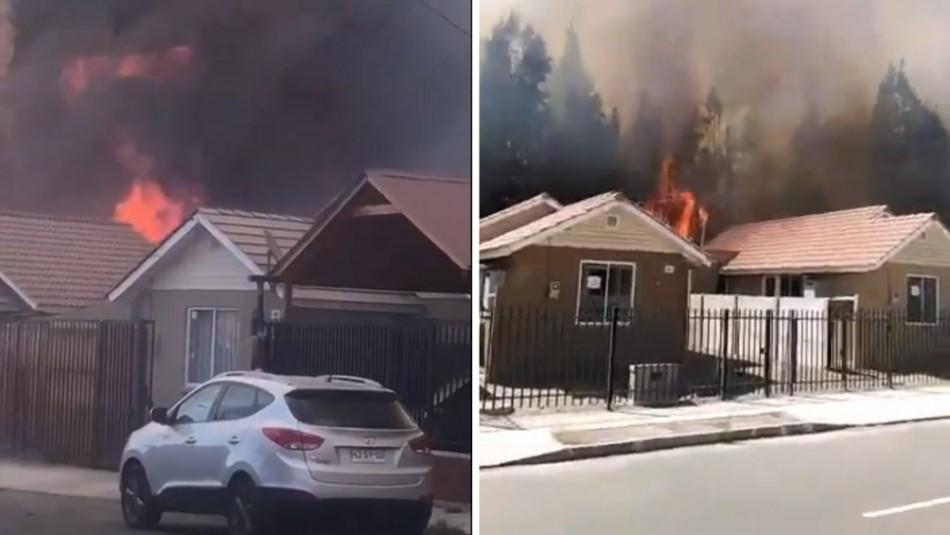 Declaran Alerta Roja en Ovalle por incendio forestal que amenaza a viviendas cercanas