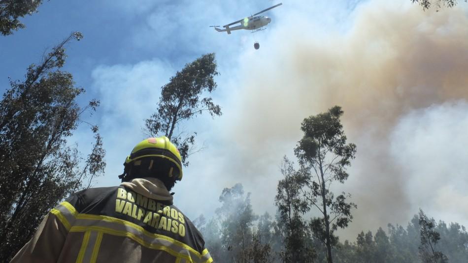Alerta Roja en Valparaíso por incendio forestal a un costado de la Ruta 68