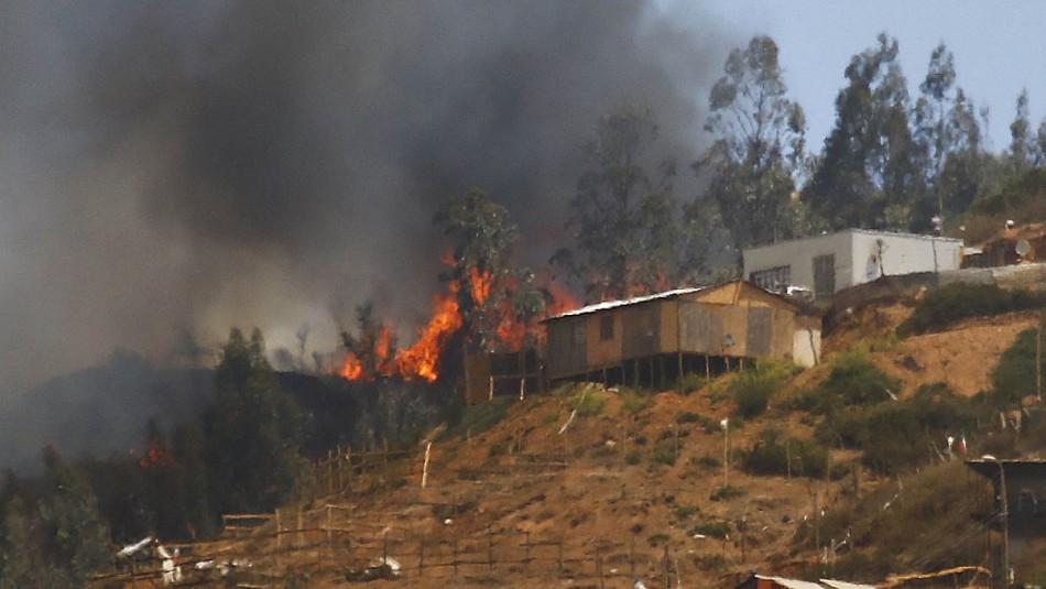 Incendios en Valparaíso: Más de 3.100 hectáreas han sido consumidas por las llamas