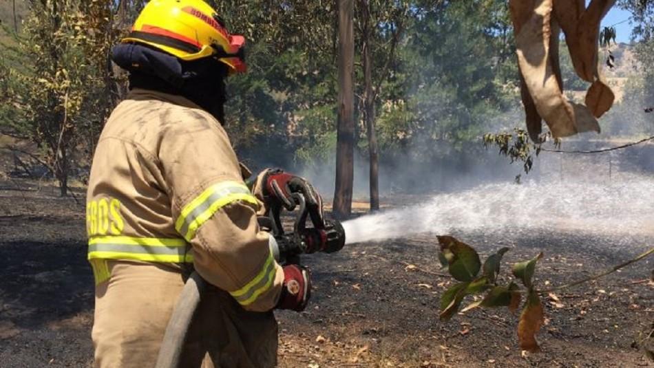 Declaran alerta roja para la comuna de Santa Cruz por incendio forestal cercano a viviendas