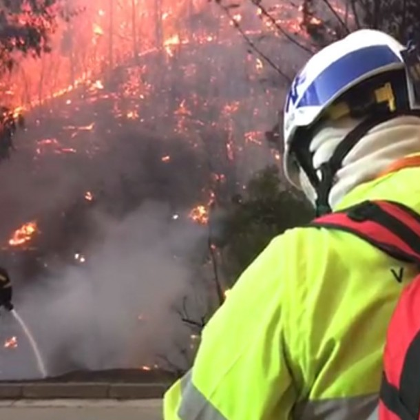 Incendio forestal obliga a cortar ruta de acceso a Viña del Mar