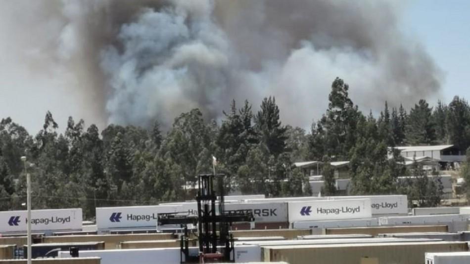 Incendio forestal afecta a la localidad de Placilla en Valparaíso: Onemi declara Alerta Roja