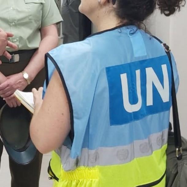 ONU: En Chile