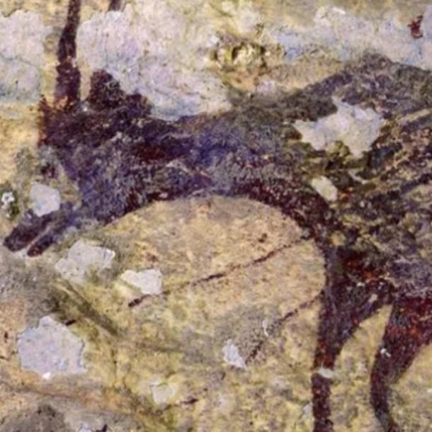 44 mil años: Universidad descubrió la pintura rupestre más antigua de la que se tenga registro
