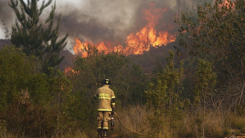 Incendio en San José de Maipo ha consumido más de 640 hectáreas de vegetación