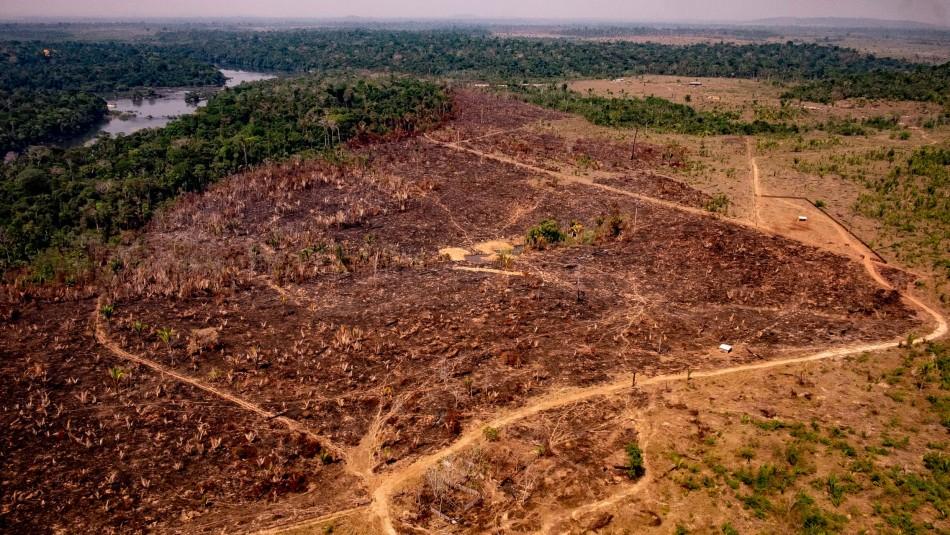 Deforestación de la Amazonía brasileña aumenta un 85,3% en 2019