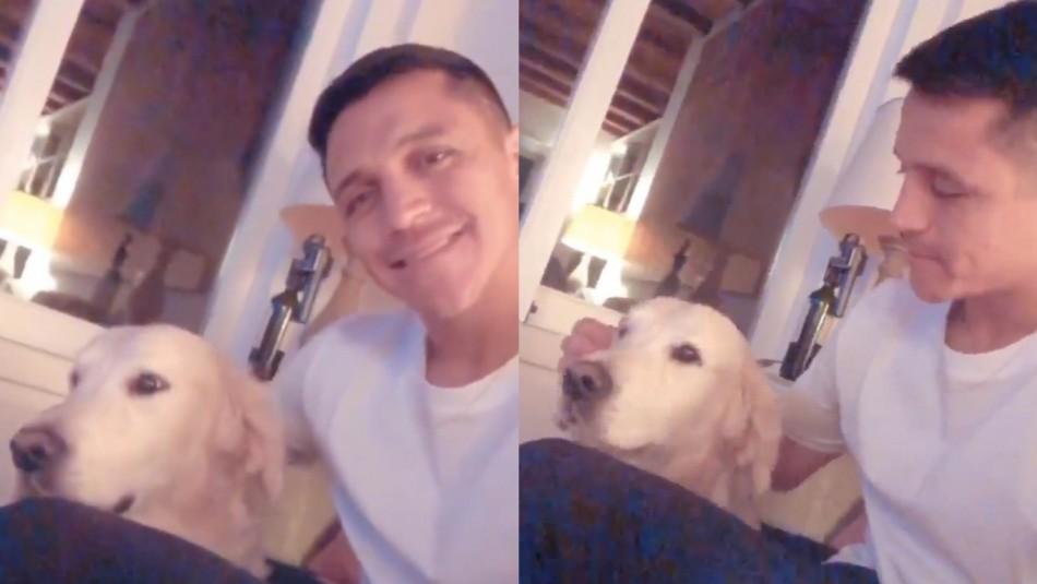 Alexis Sánchez celebra su regreso a las canchas disfrutando con sus perros regalones