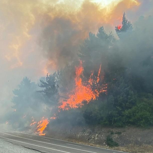 Alerta Roja en Santa Juana: 450 hectáreas quemadas y 5 casas afectadas