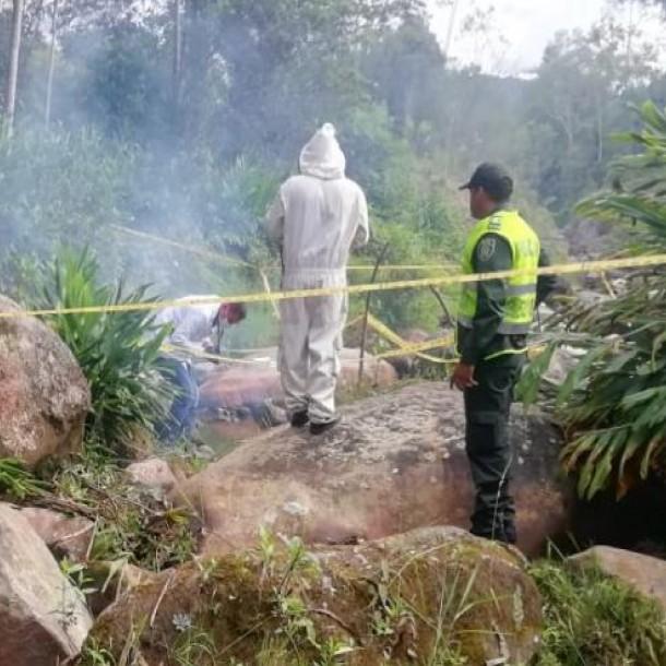 Niño de ocho años murió en Colombia tras ser atacado por un enjambre de abejas