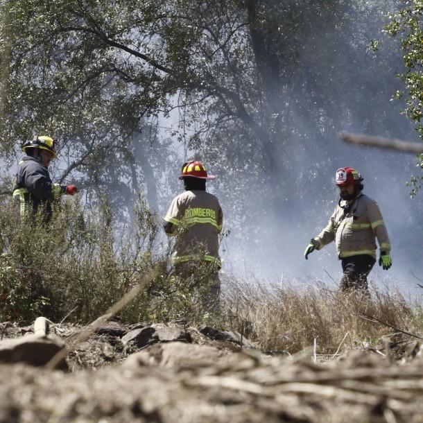 Declaran Alerta Roja en la comuna de Galvarino por incendio forestal cercano a viviendas