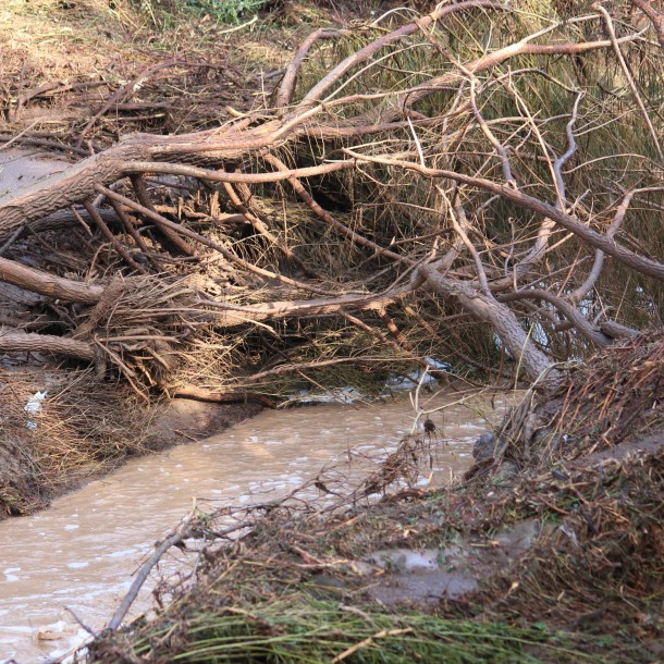 Lluvias en el norte: Más de 90 personas siguen aisladas y monitorean riesgo de remociones
