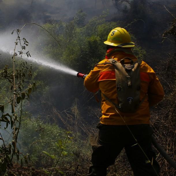 Declaran Alerta Roja en la comuna de Valdivia por incendio forestal