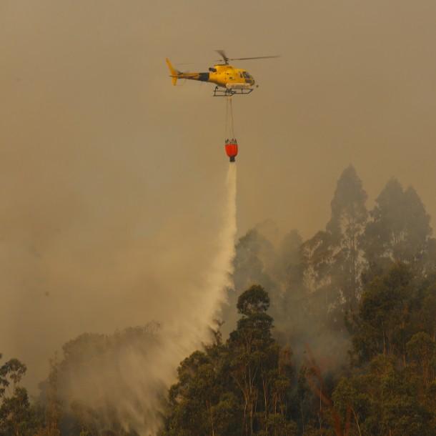 Incendios forestales en Chile: Onemi reporta que 17 siniestros continúan activos