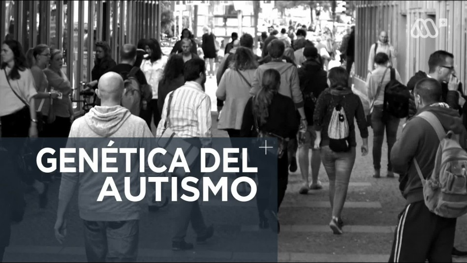 Hallazgo de genes asociados al autismo abre las puertas a nuevas terapias