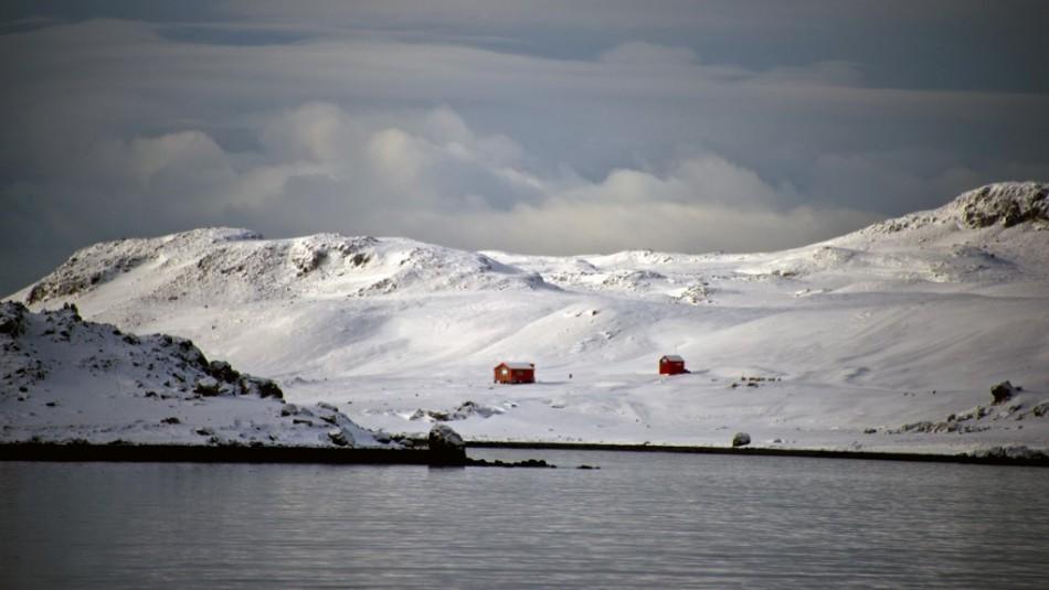La Antártida argentina registra temperaturas récord: Termómetros llegaron hasta los 18,3 grados