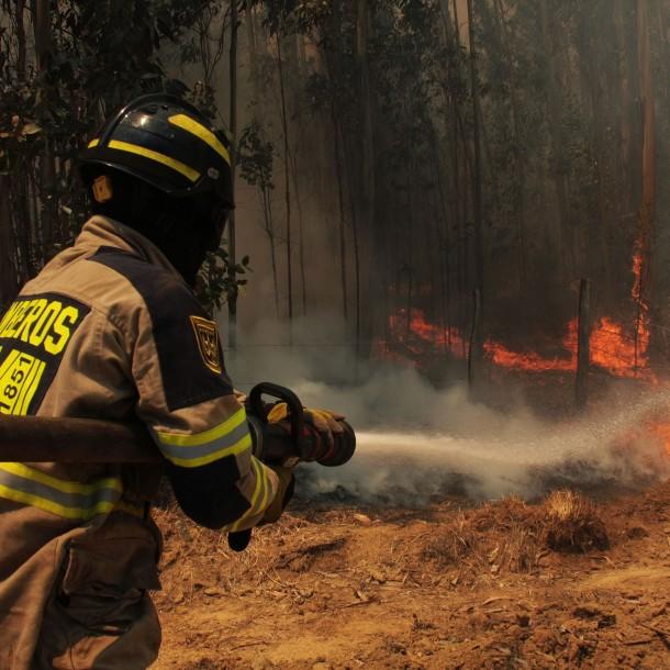 Incendio forestal afecta a Parque Nacional Radal Siete Tazas