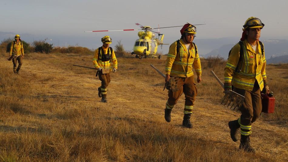 Incendios forestales en Chile: Onemi reporta que 8 siniestros continúan activos