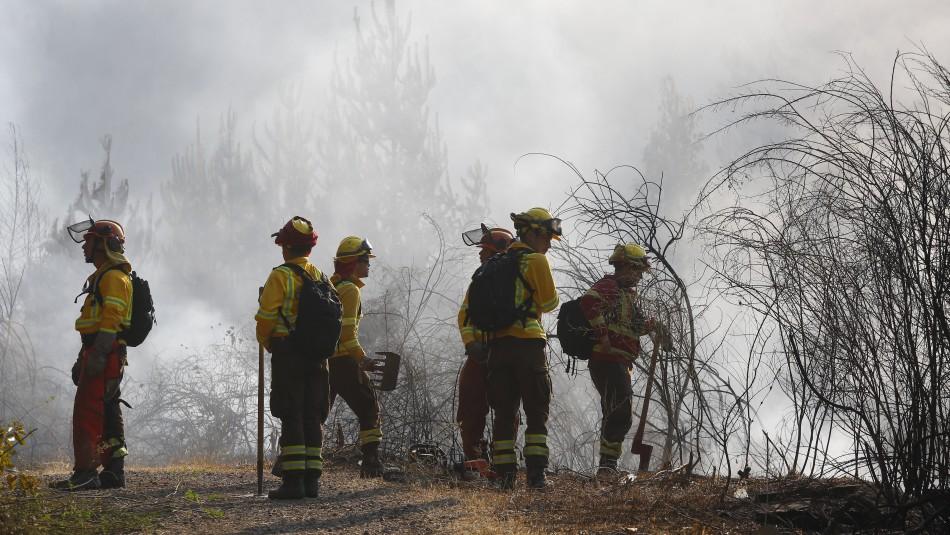Declaran Alerta Roja por incendio forestal en la comuna de Temuco