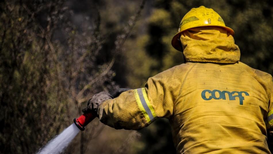Alerta Roja en Los Ángeles por incendio forestal que amenaza sectores poblados e infraestructura crítica
