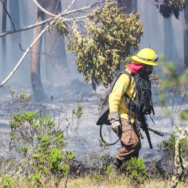 Declaran Alerta Roja en comuna de Lautaro por incendio de