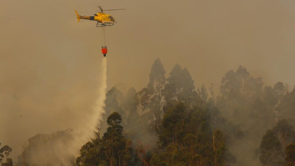 Declaran Alerta Roja por incendio forestal en la comuna de Mariquina