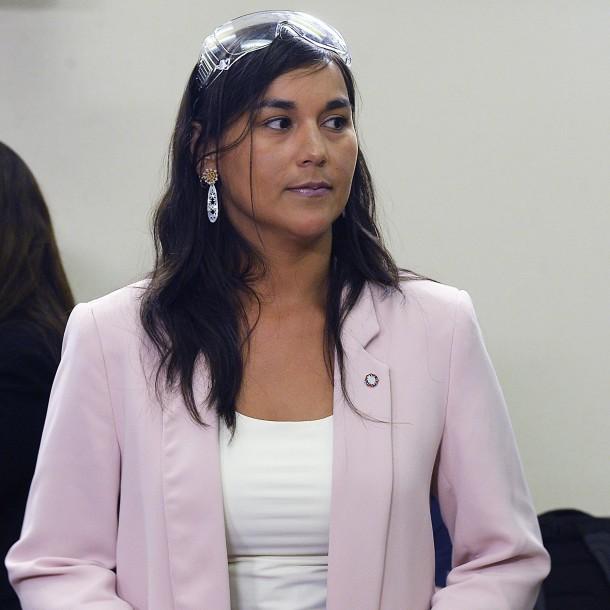 Presidenta de Colegio Médico a Mañalich: