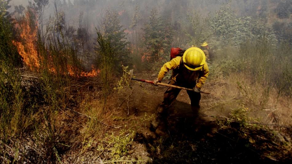 Declaran Alerta Roja en Quillón por incendio forestal cercano a viviendas
