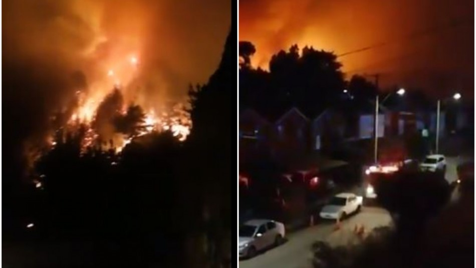 Alerta Roja por incendio forestal que amenaza viviendas en Constitución