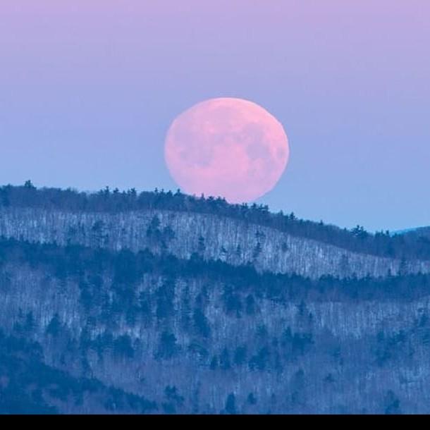 Superluna rosa: Conoce la hora exacta en que se podrá ver el fenómeno en su mayor esplendor