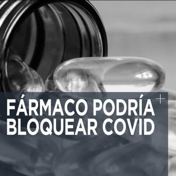 La ciencia trabaja a contrareloj en busca de un tratamiento contra el COVID-19