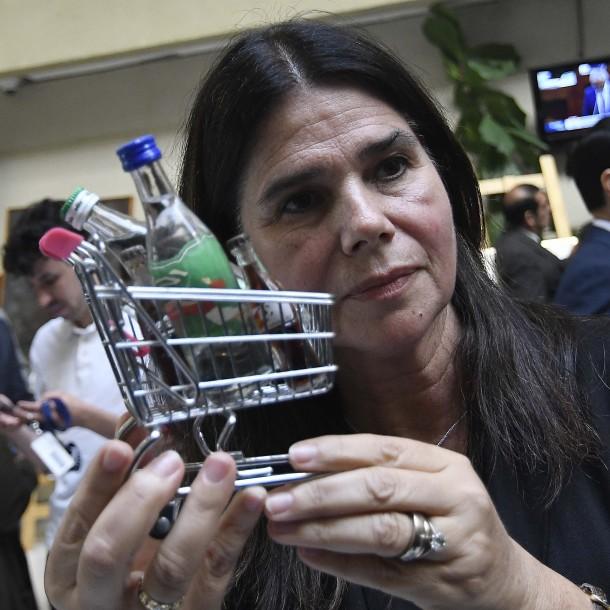 Diputada Ossandón pide al Gobierno decretar
