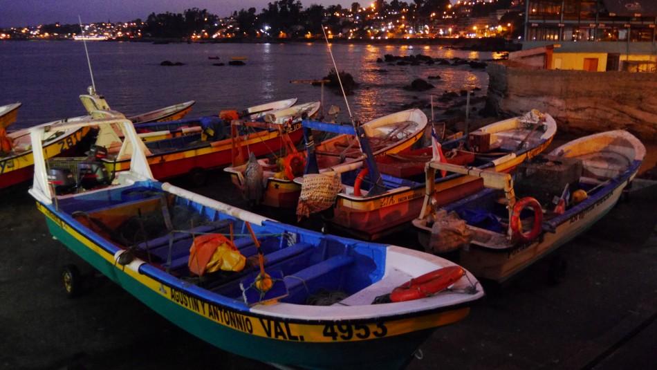 SHOA cancela Estado de Precaución en tres regiones, Isla de Pascua e Isla San Félix