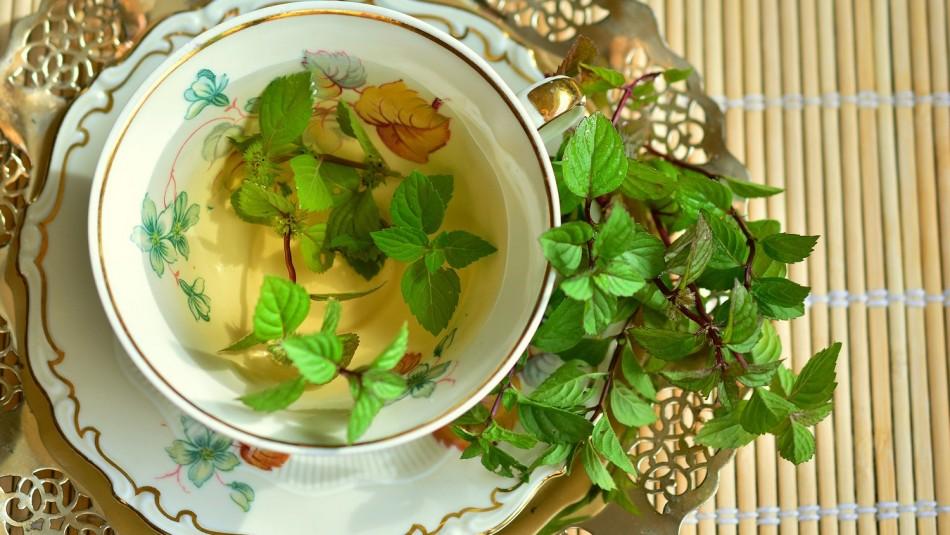 Antioxidante y ayuda a bajar de peso: Conoce todos los beneficios del té verde