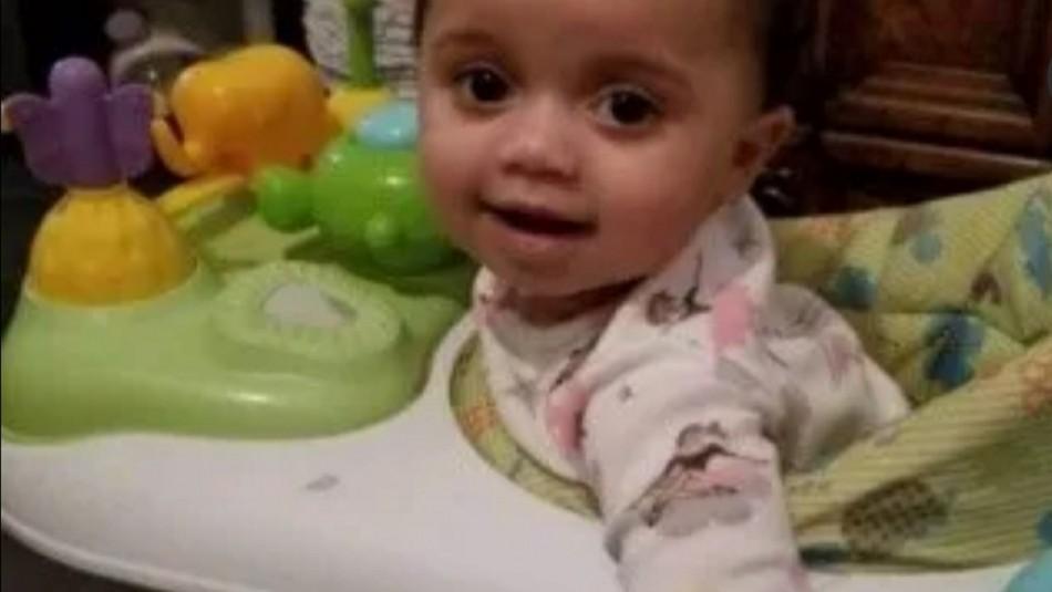 Perro pitbull muerde y mata a bebé de apenas un año tras acercarse al plato de su comida