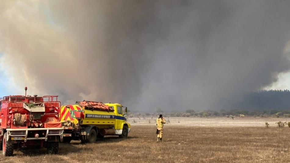 Intendente y alerta roja por incendios en Peñuelas:
