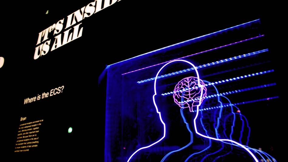 ¿Podría la IA ayudar a predecir la enfermedad de Alzheimer antes de que se desarrolle?